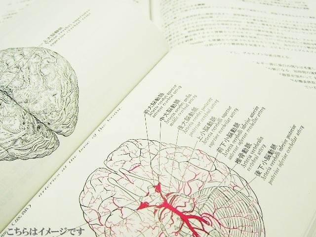 脳神経外科の医師募集(長崎県諫早市)
