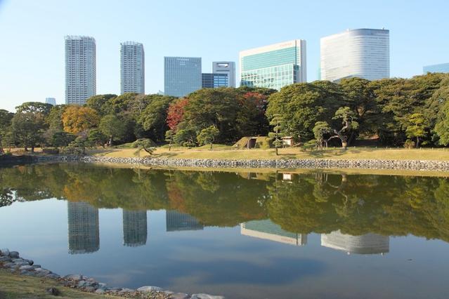 東京都港区の健診クリニックで内視鏡担当医師を募集します。