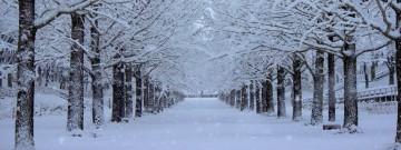 冬期休業のお知らせ – 2020